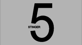 STINGER5の細かすぎて伝わらないカスタマイズ