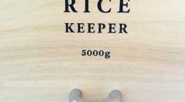 お米5kgがちょうど入る桐製米びつ「ライスキーパー(Rice Keeper)」